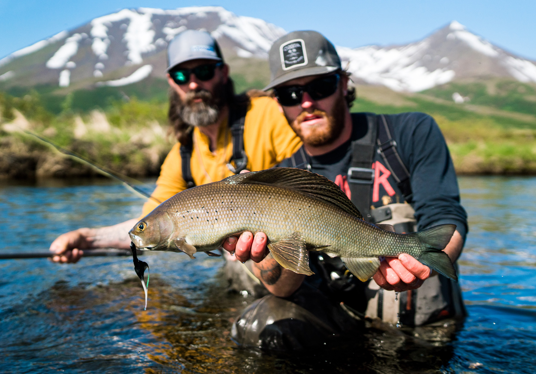 FlyLords Fly Fishing