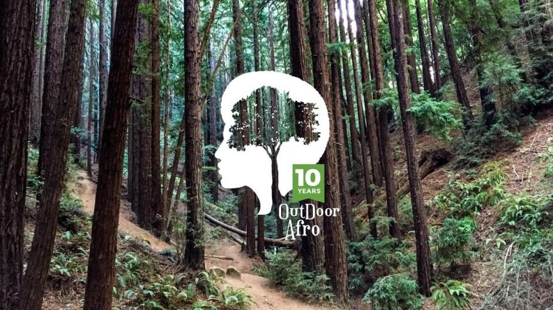 Outdoor Afro's logo on top of a forest full of trees.